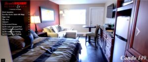 Room #149- King Fantasy room with peek-a-boo shower $833.11